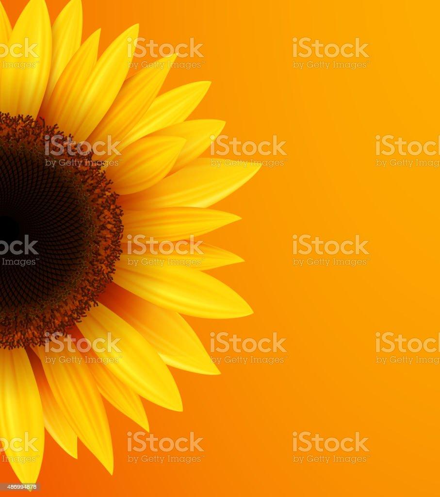 Sunflower background vector art illustration