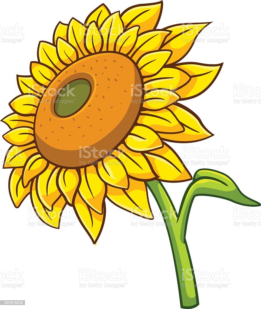 Sunflower cartoon style royalty-free stock vector art