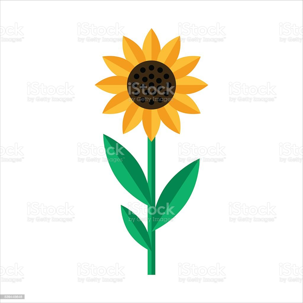 Sunflower icon isolated in Flat style vector art illustration