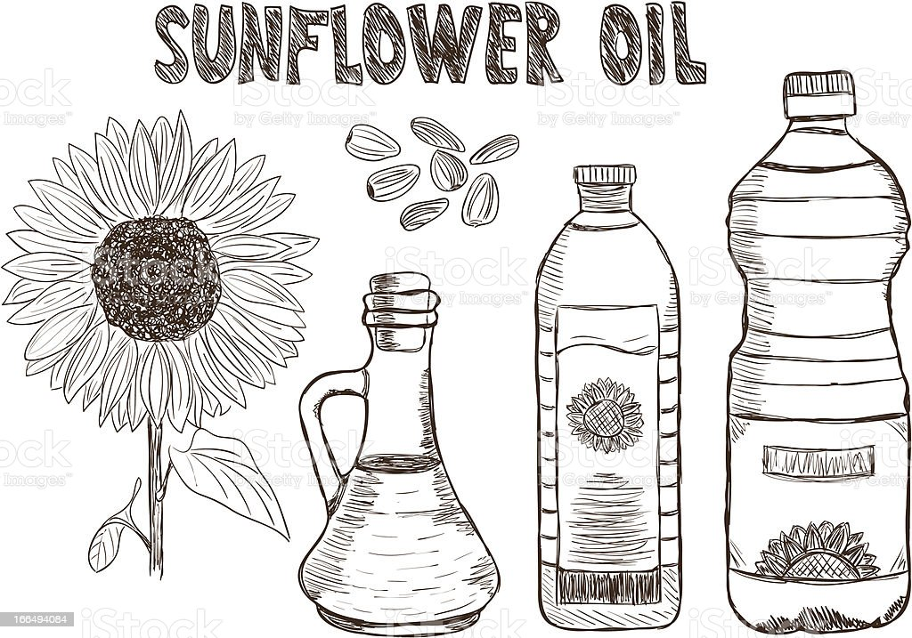 Sunflower oils doodle vector art illustration