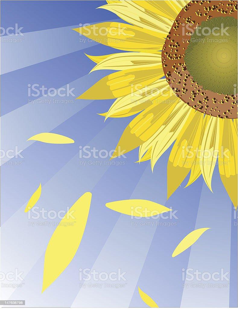 Sun•flower vector art illustration