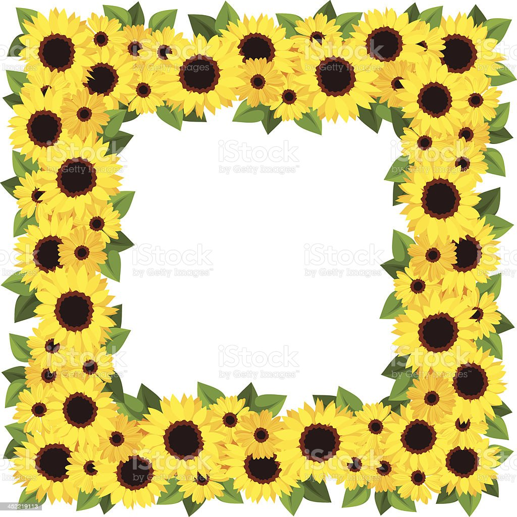 Sunflowers frame. Vector illustration. royalty-free stock vector art