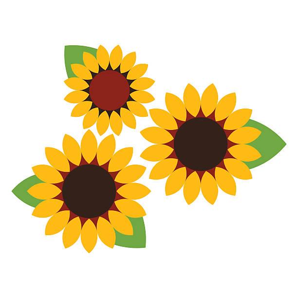 Sunflower Outline Clip Art, Vector Images & Illustrations ...