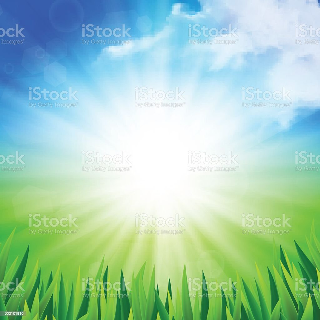 Sunny summer background vector art illustration