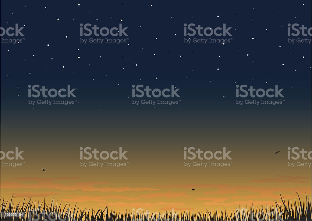 Sunset background. vector art illustration