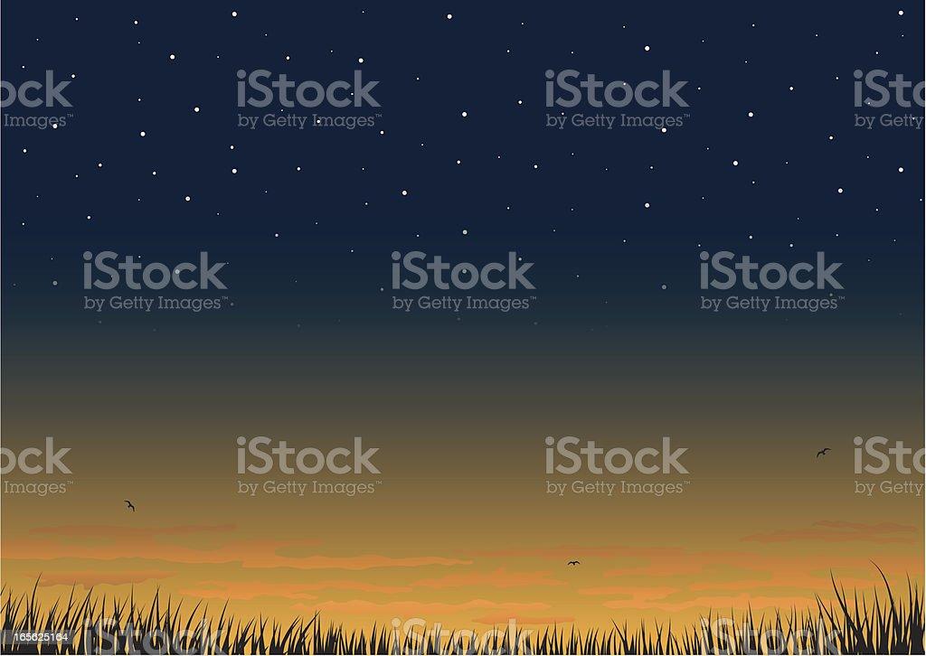Sunset background. vector art illustration