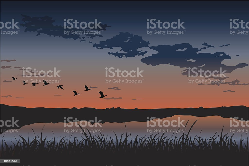 Sunset Ducks at a Montana National Wildlife Refuge royalty-free stock vector art