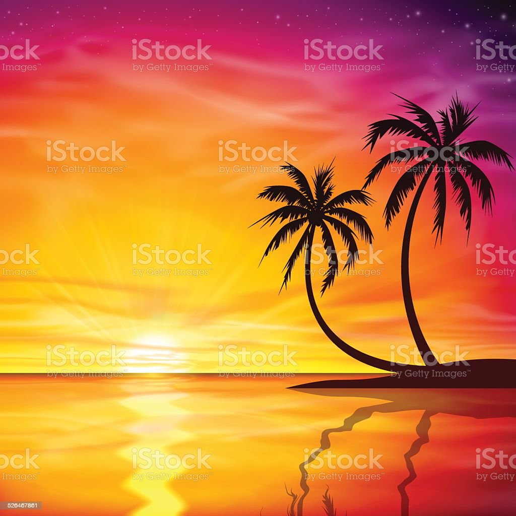 Sunset, Sunrise with Palm Trees vector art illustration