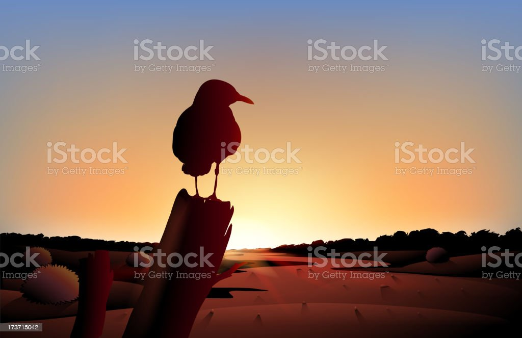 Sunset view of the desert with a big bird vector art illustration
