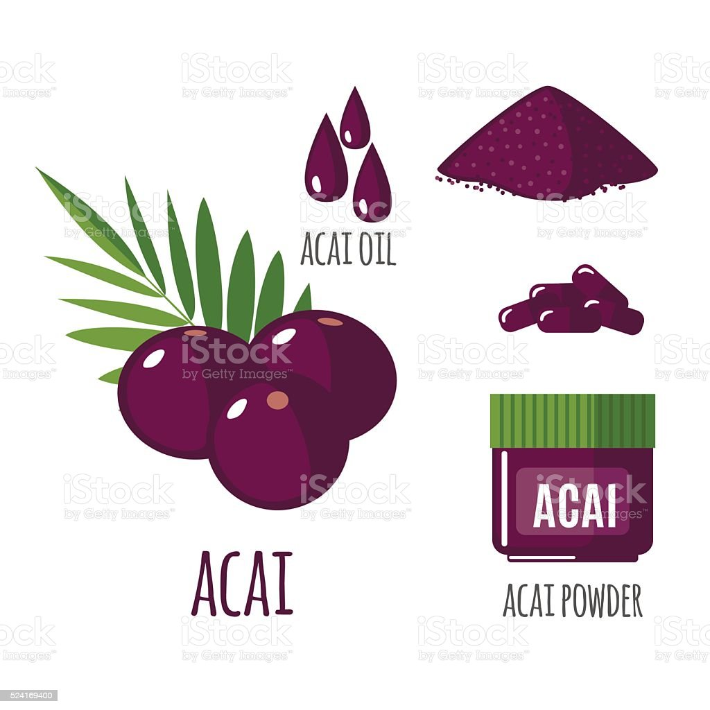 Superfood acai berry set in flat style. vector art illustration