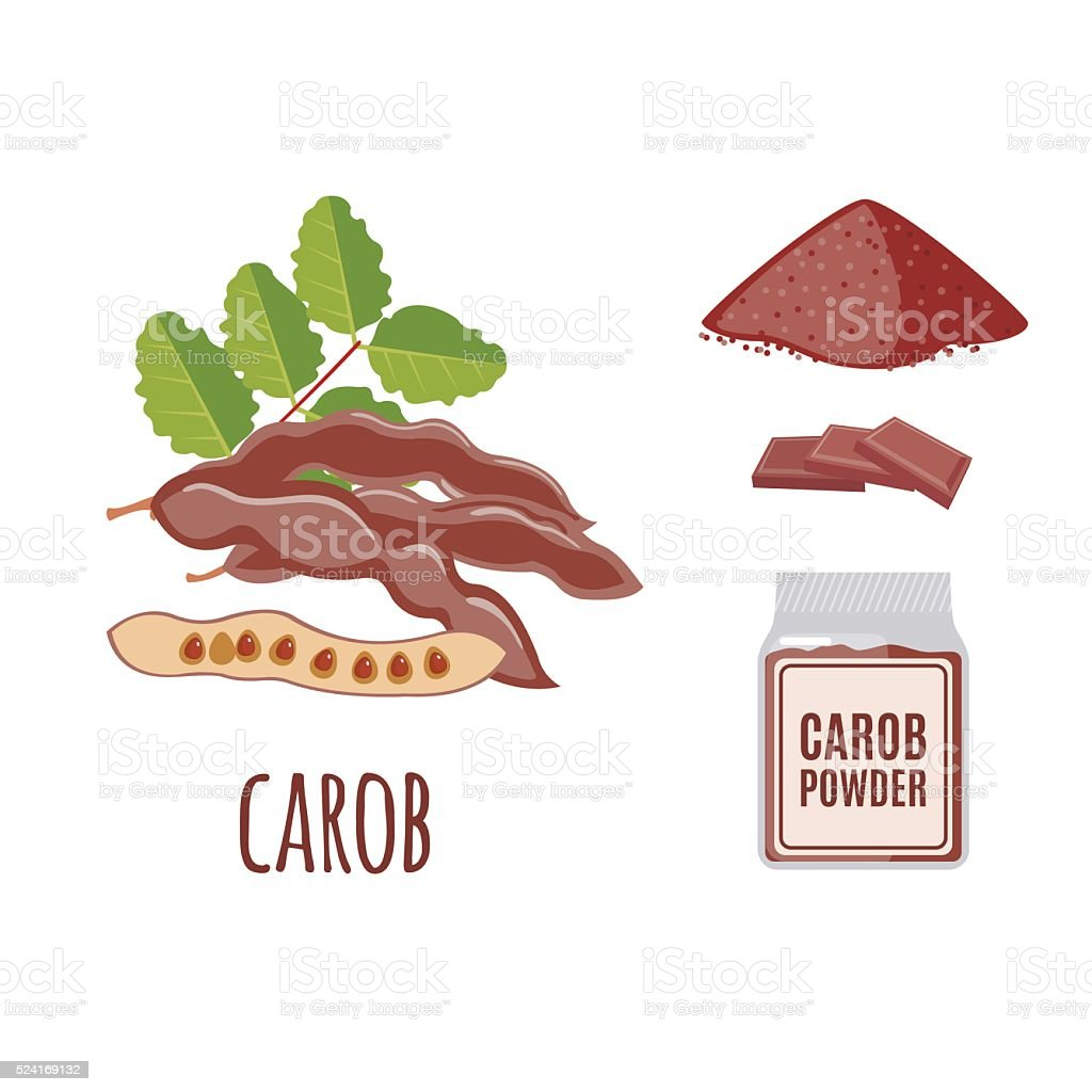 Superfood carob set in flat style. vector art illustration