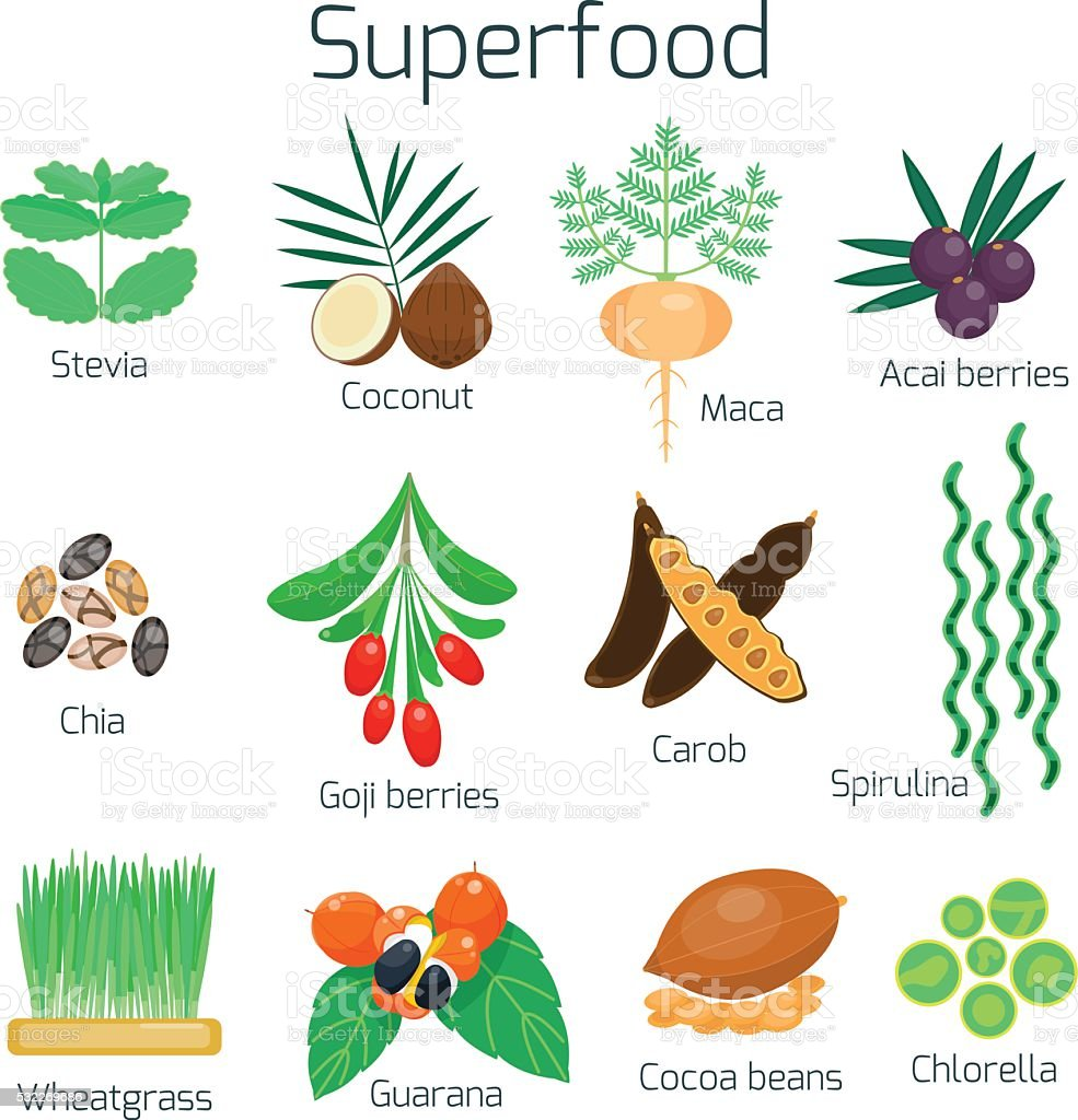 Superfood set. Collection of super food vector art illustration