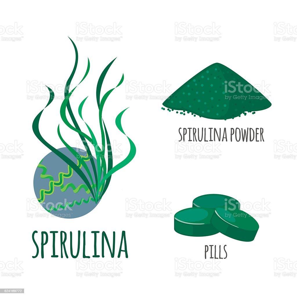 Superfood spirulina set in flat style. vector art illustration