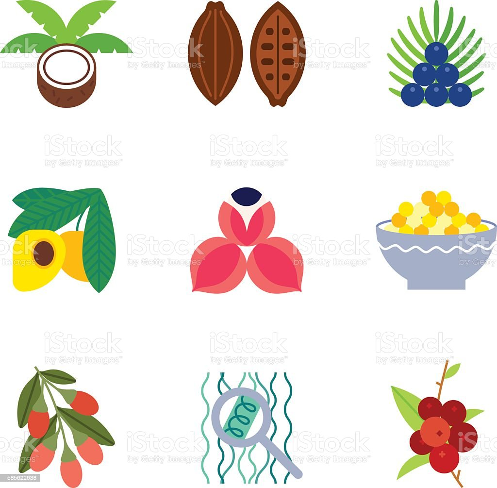 Superfoods flat icons set. vector art illustration