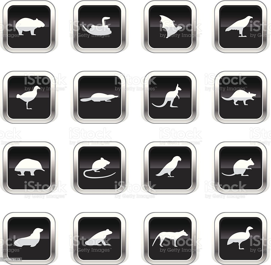 Supergloss Black Icons - Tasmanian Animals royalty-free stock vector art