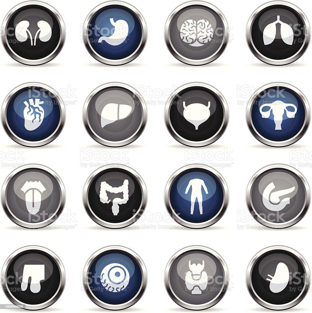 Supergloss Icons - Human Organs vector art illustration