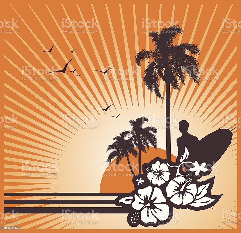 surf sunset royalty-free stock vector art