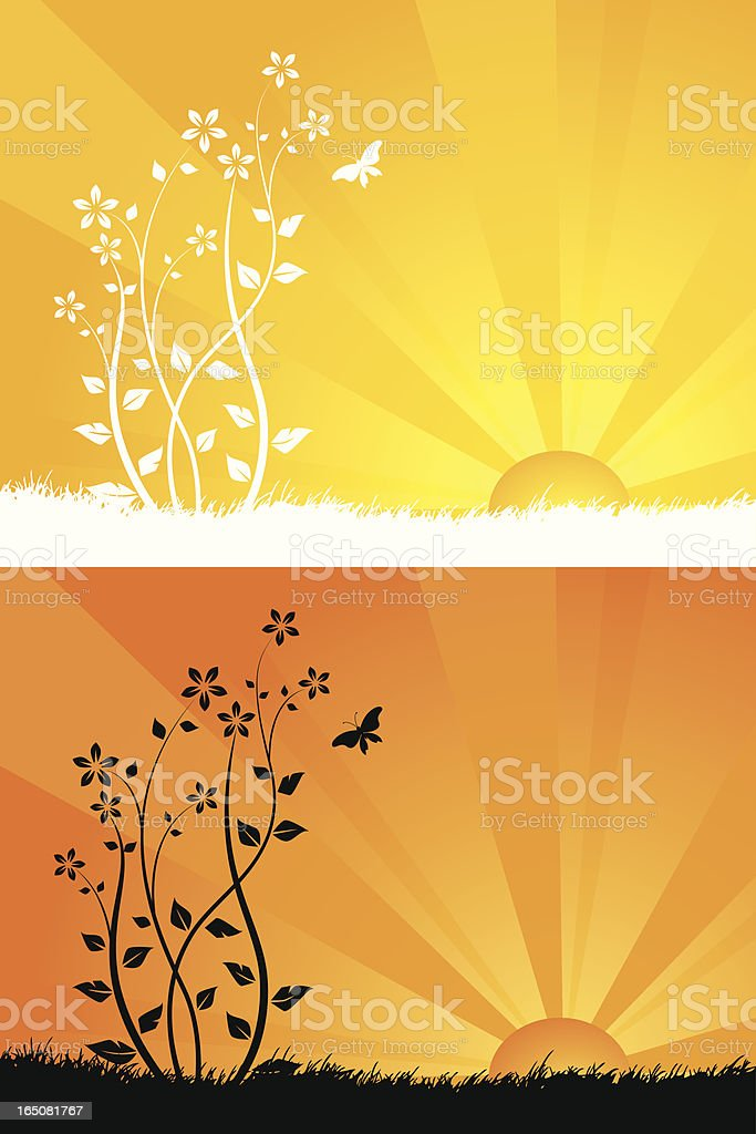 Surise flowers royalty-free stock vector art