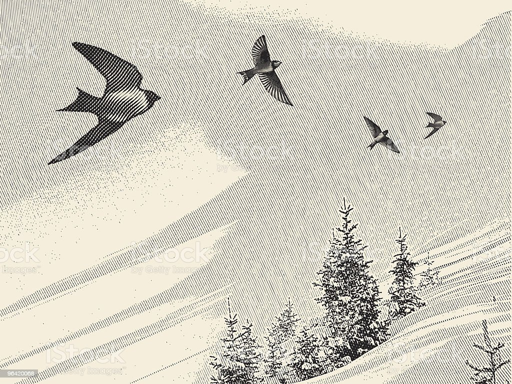 Swallows and Pine Trees vector art illustration