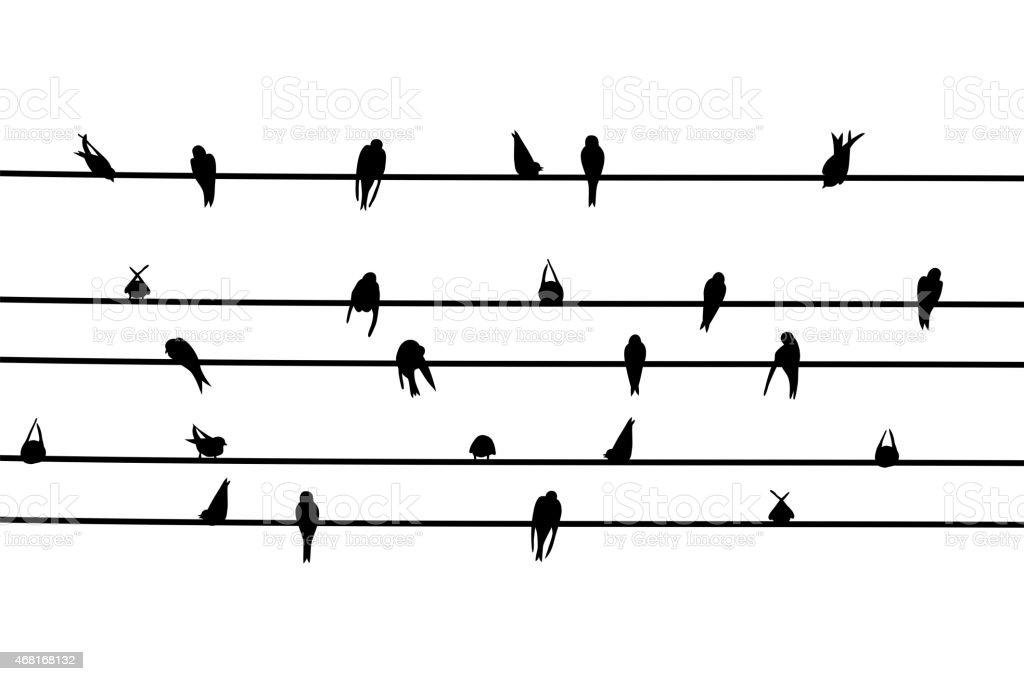 Swallows vector art illustration