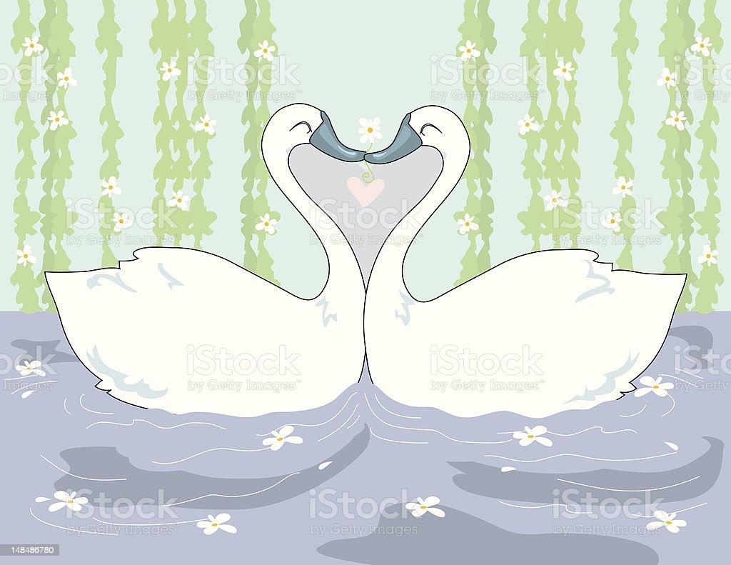 Swans Kissing royalty-free stock vector art