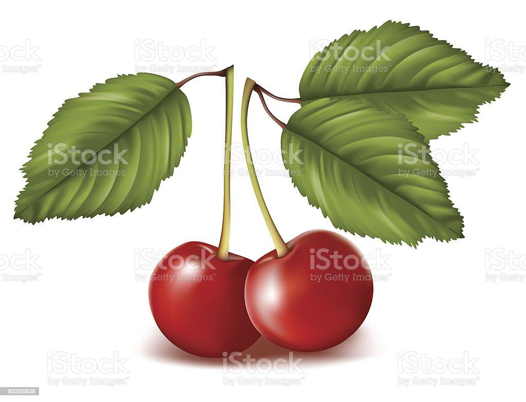 Sweet Cherry royalty-free stock vector art