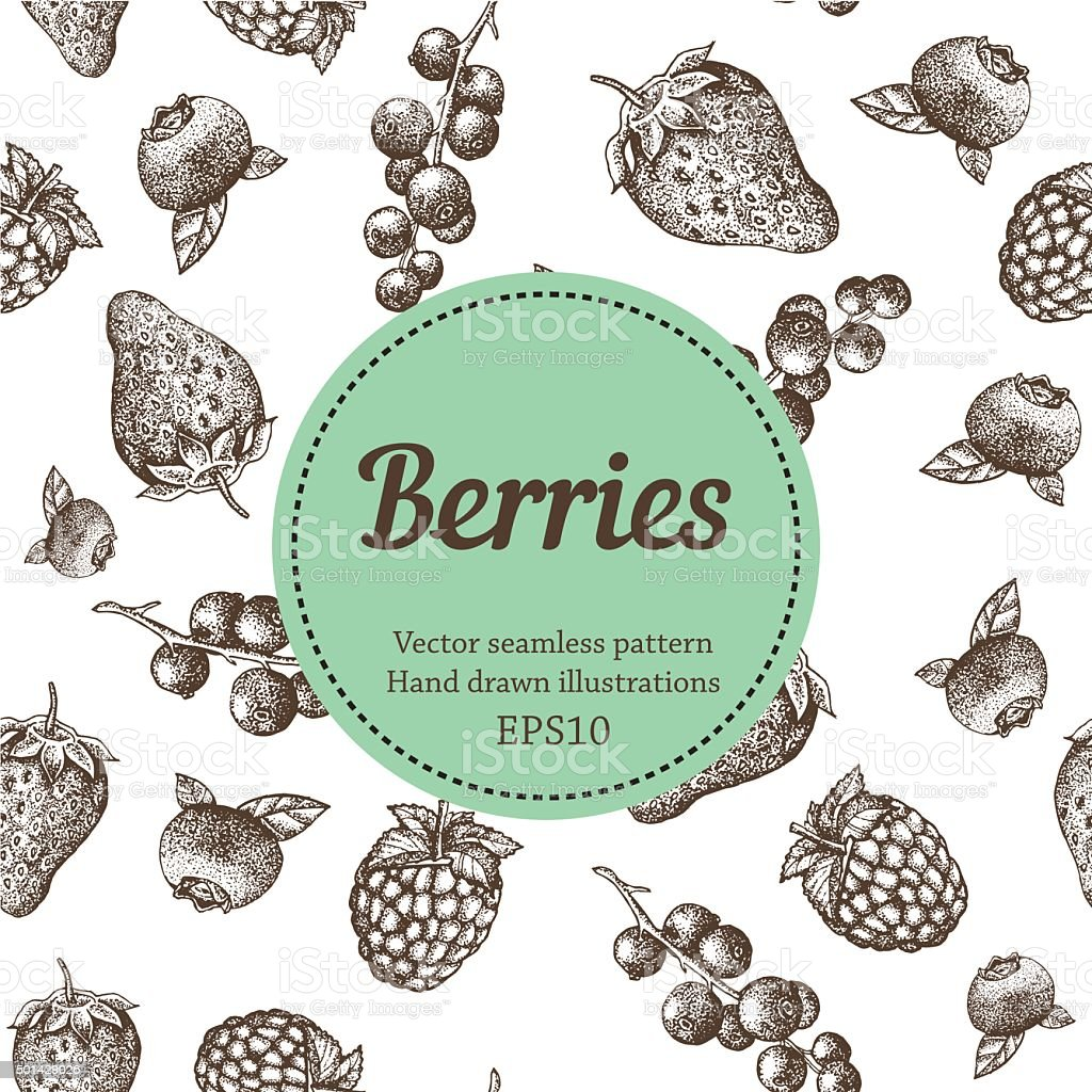 Sweet hand drawing vector seamless pattern. Berry sketch illustration vector art illustration