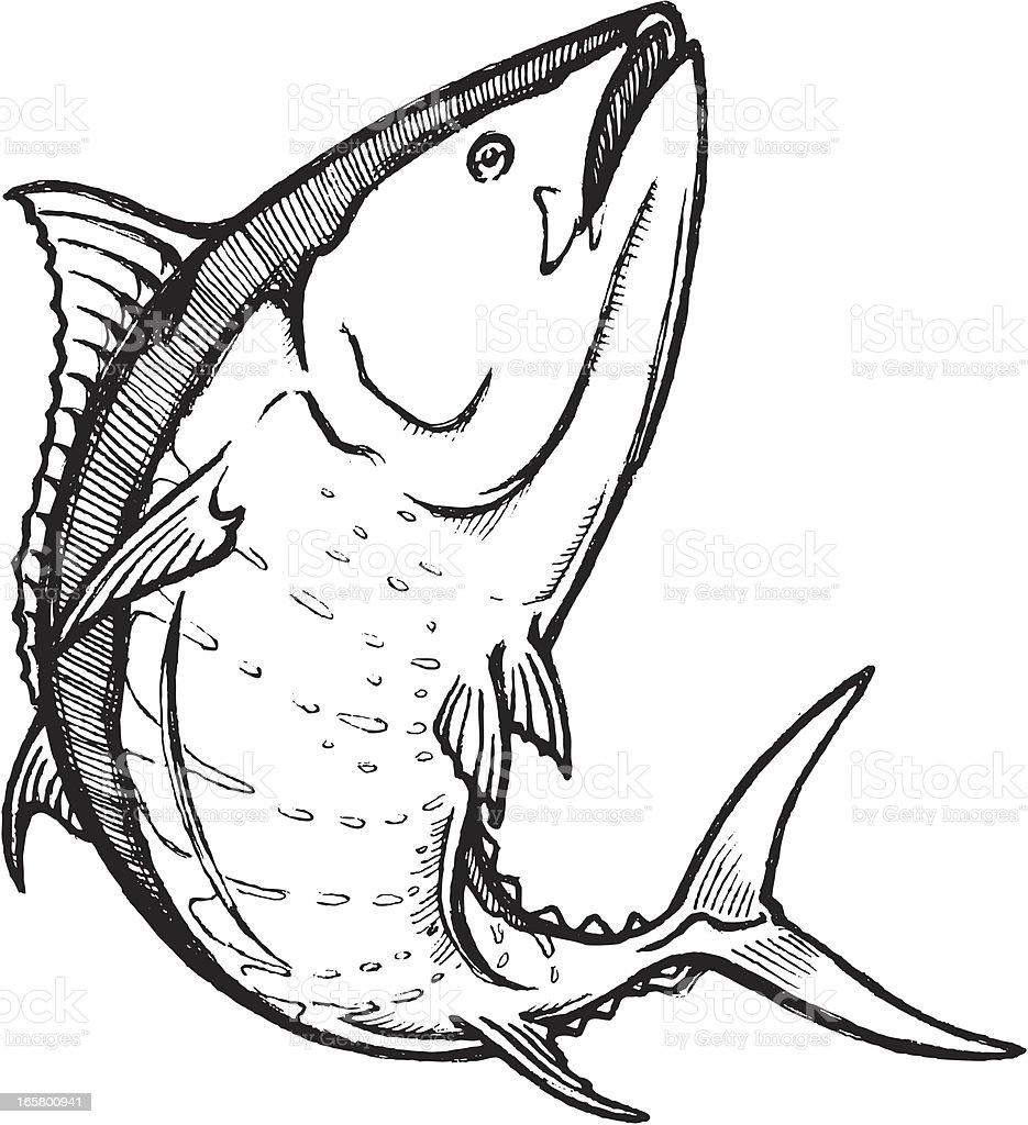 Swimming Bluefin Tuna Sketch vector art illustration