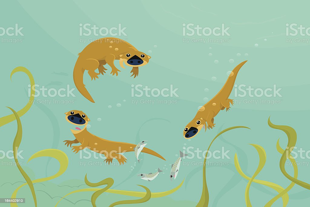 Swimming Otters royalty-free stock vector art