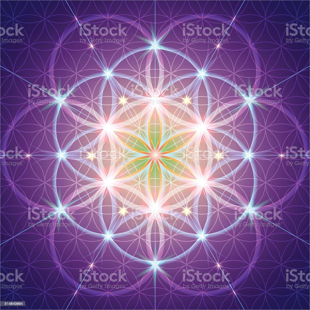 symbol of Sacred Geometry vector art illustration