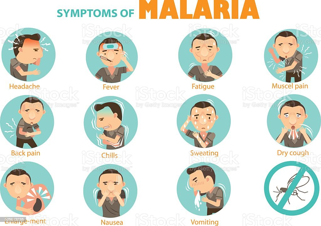 symptoms malaria vector art illustration
