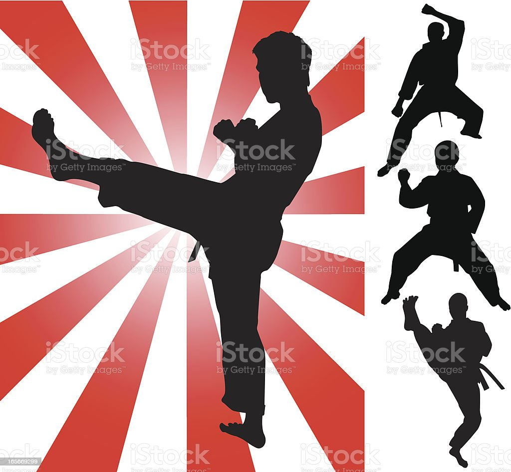 Tae kwon do Fighting Silhouettes vector art illustration