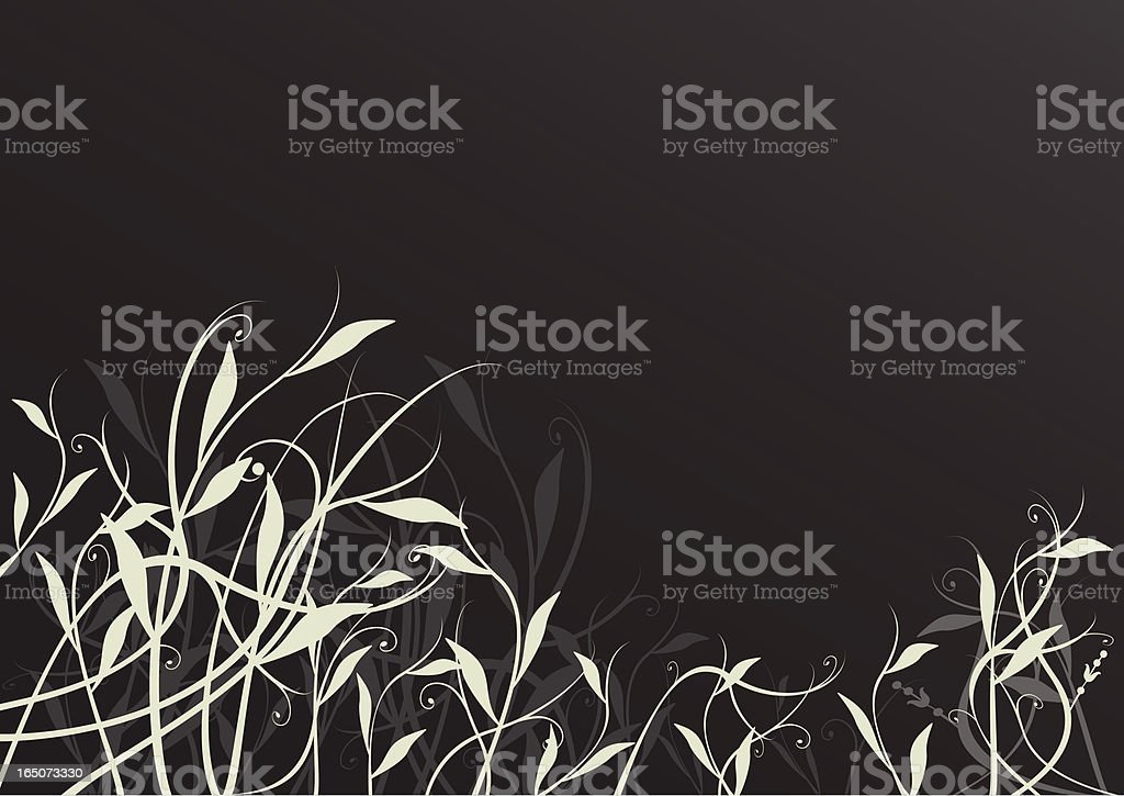 Tangled foliage on dark background royalty-free stock vector art
