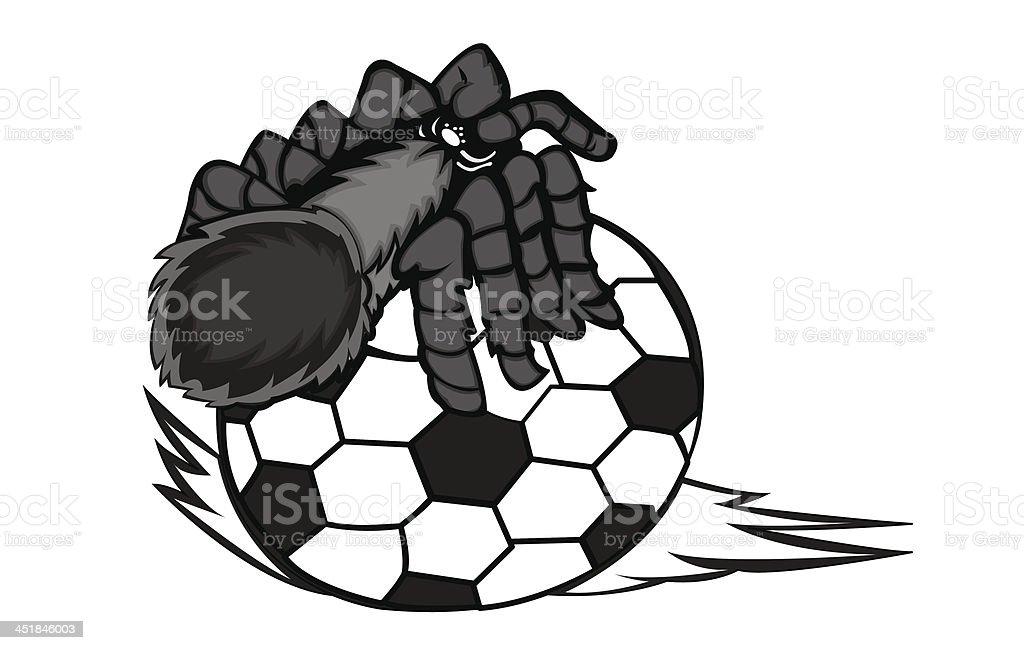Tarantula Creeping on Ball Vector Illustration royalty-free stock vector art