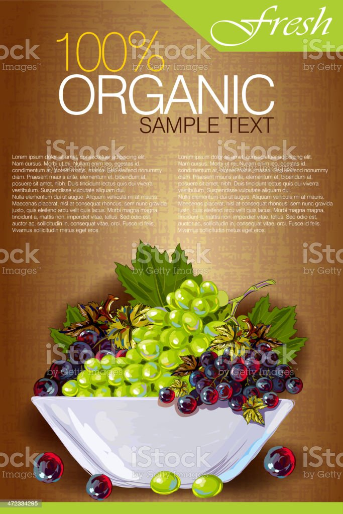Tasty Grapes vector art illustration