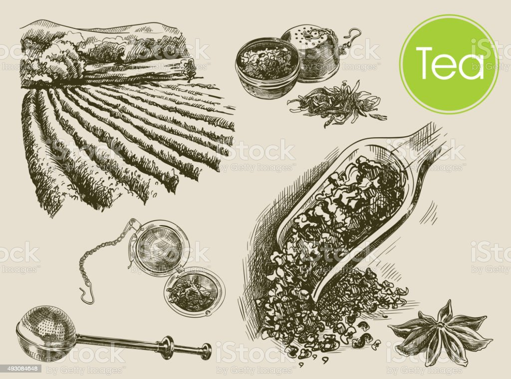 tea ceremony background vector art illustration