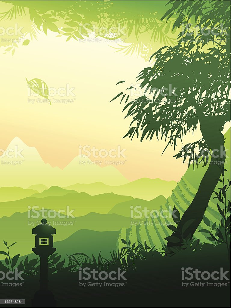 Tea field royalty-free stock vector art
