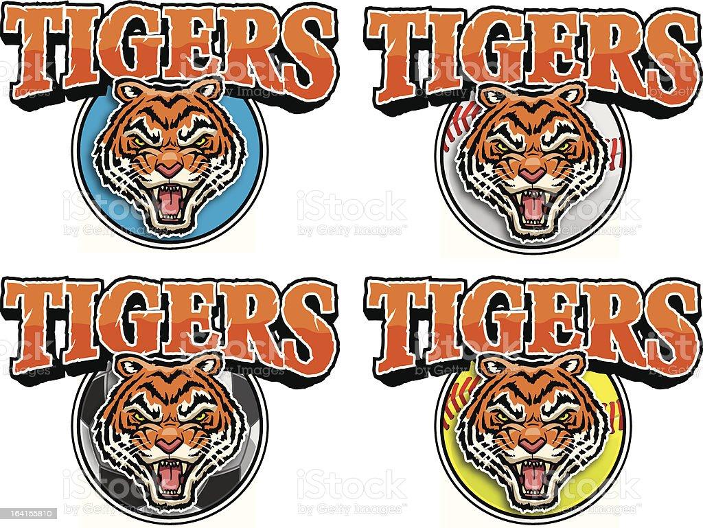 Team Tigers! vector art illustration