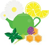 Teapot with herbals and fruits. Green Tea kettle vector illustration