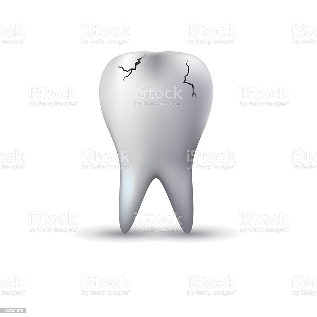 Teeth vector art illustration