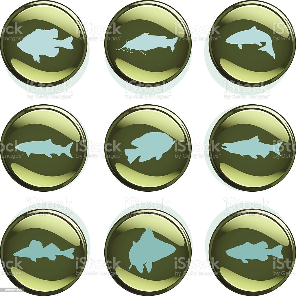 Temperate Climate Fish Badges vector art illustration