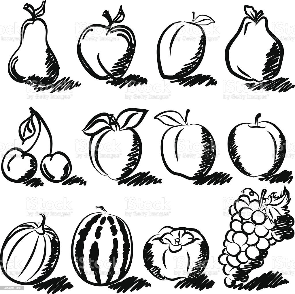 Temperate fruits drawing vector set royalty-free stock vector art