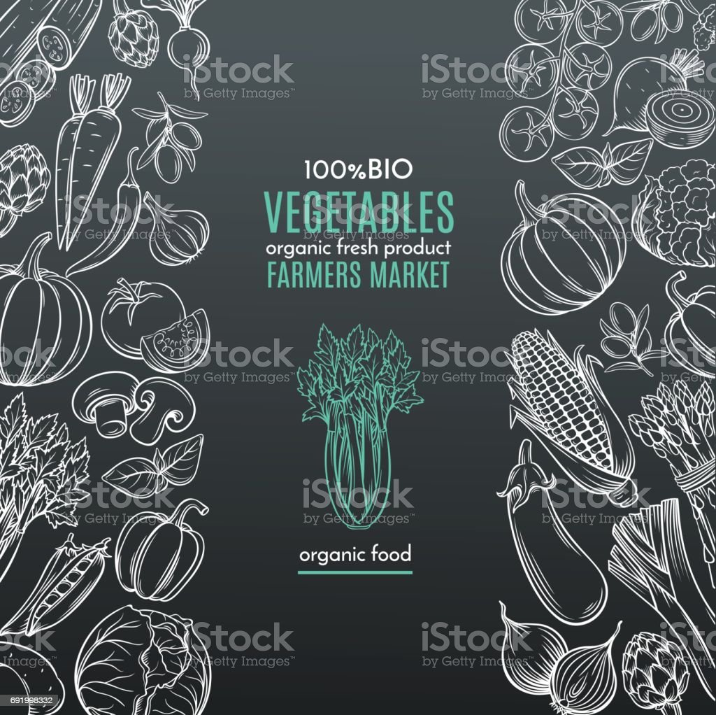 template borders with hand drawn vegetables vector art illustration