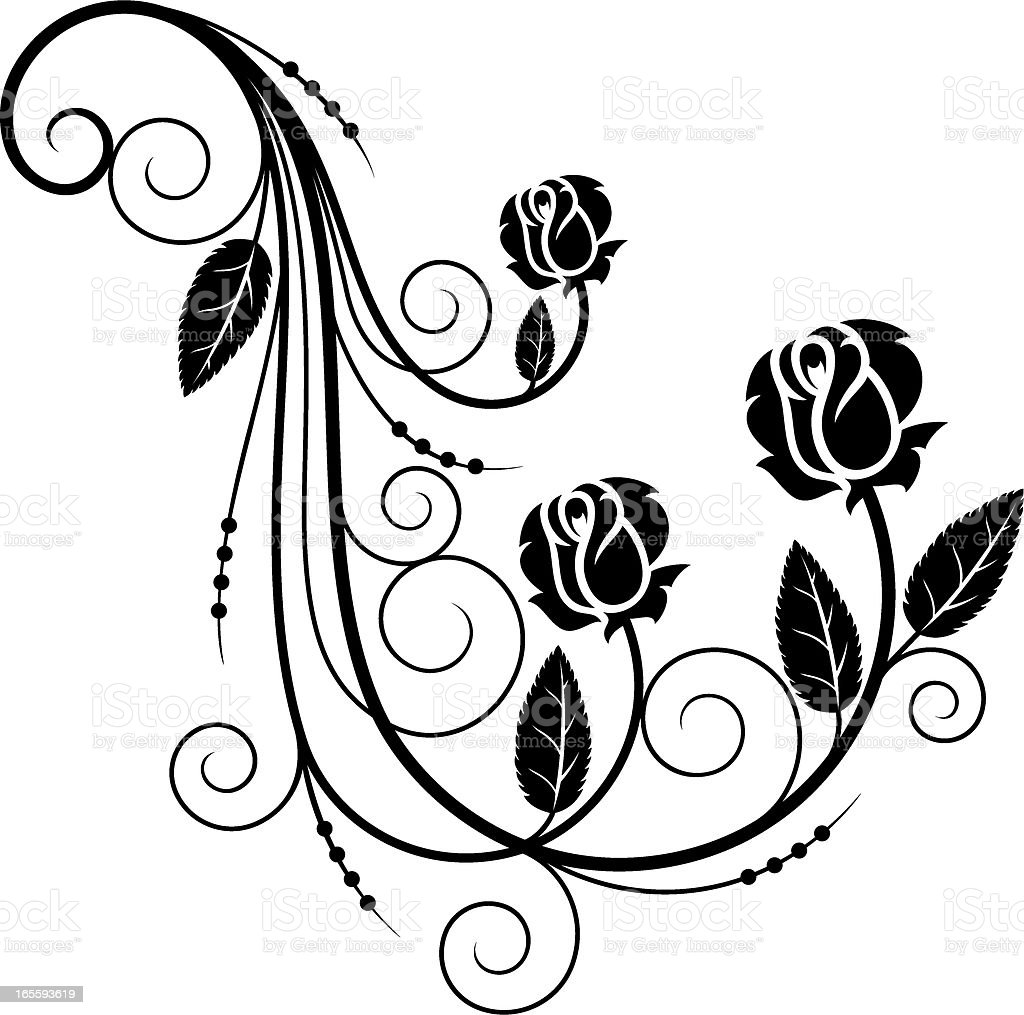 Tender rose design element royalty-free stock vector art