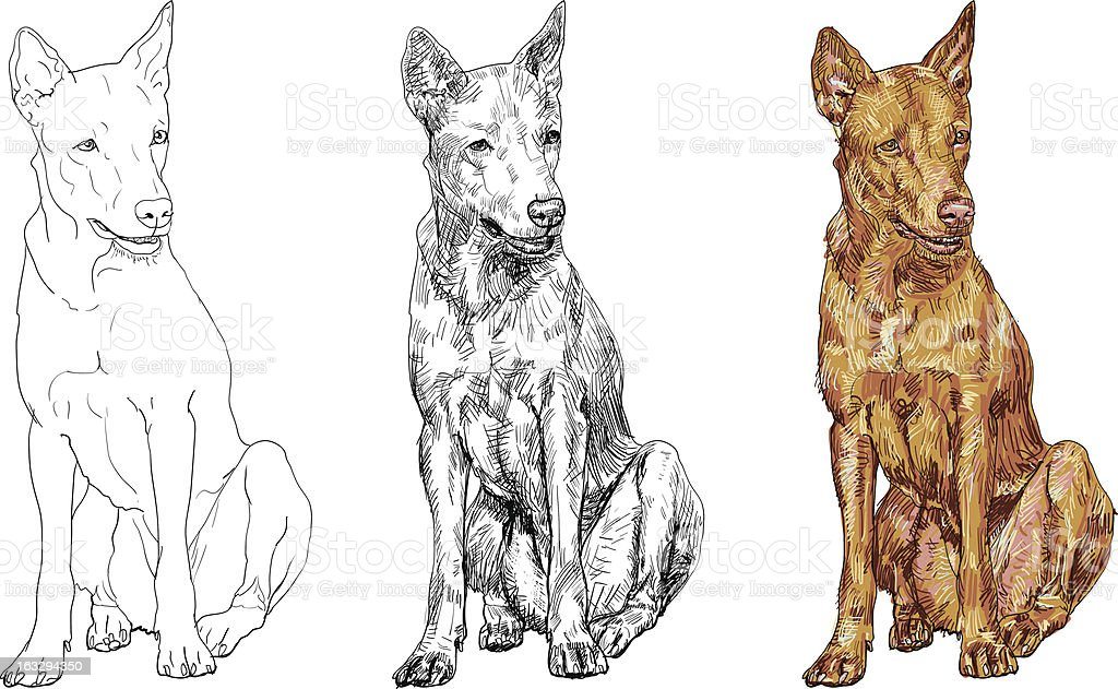 Thai dog royalty-free stock vector art