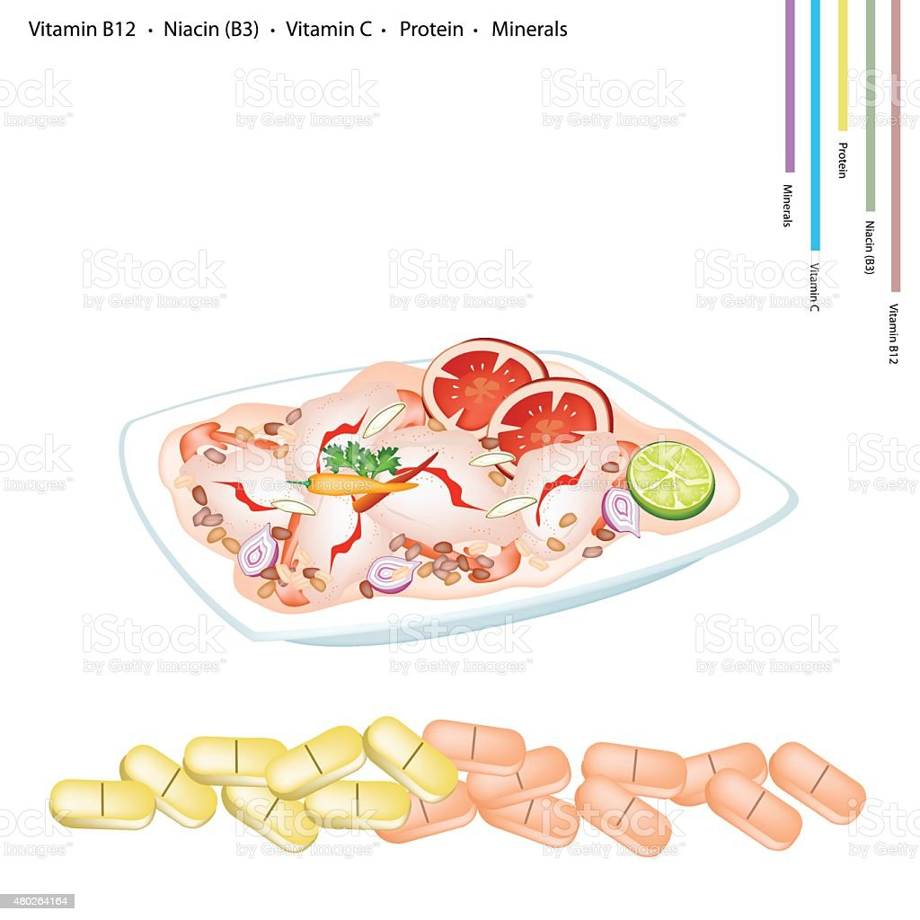 Thai Spicy Shrimp Salad with Vitamin B12, B3 and Vitamin C vector art illustration