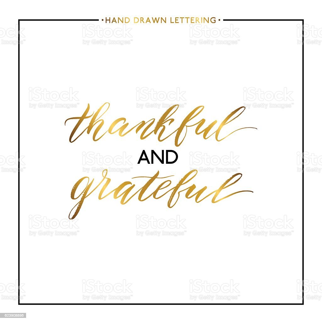 Thankful and grateful gold lettering isolated on white background vector art illustration