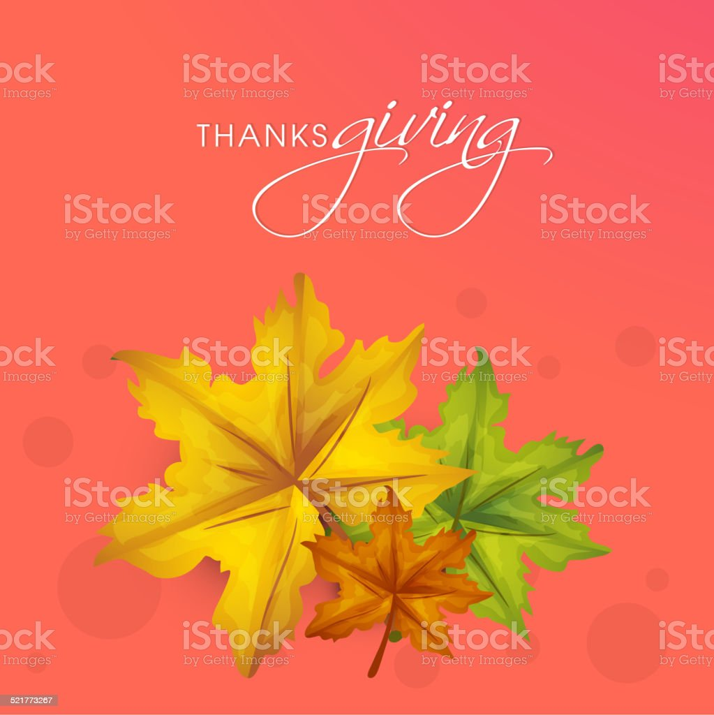 Thanksgiving Day celebration with maple leaves and stylish text. vector art illustration