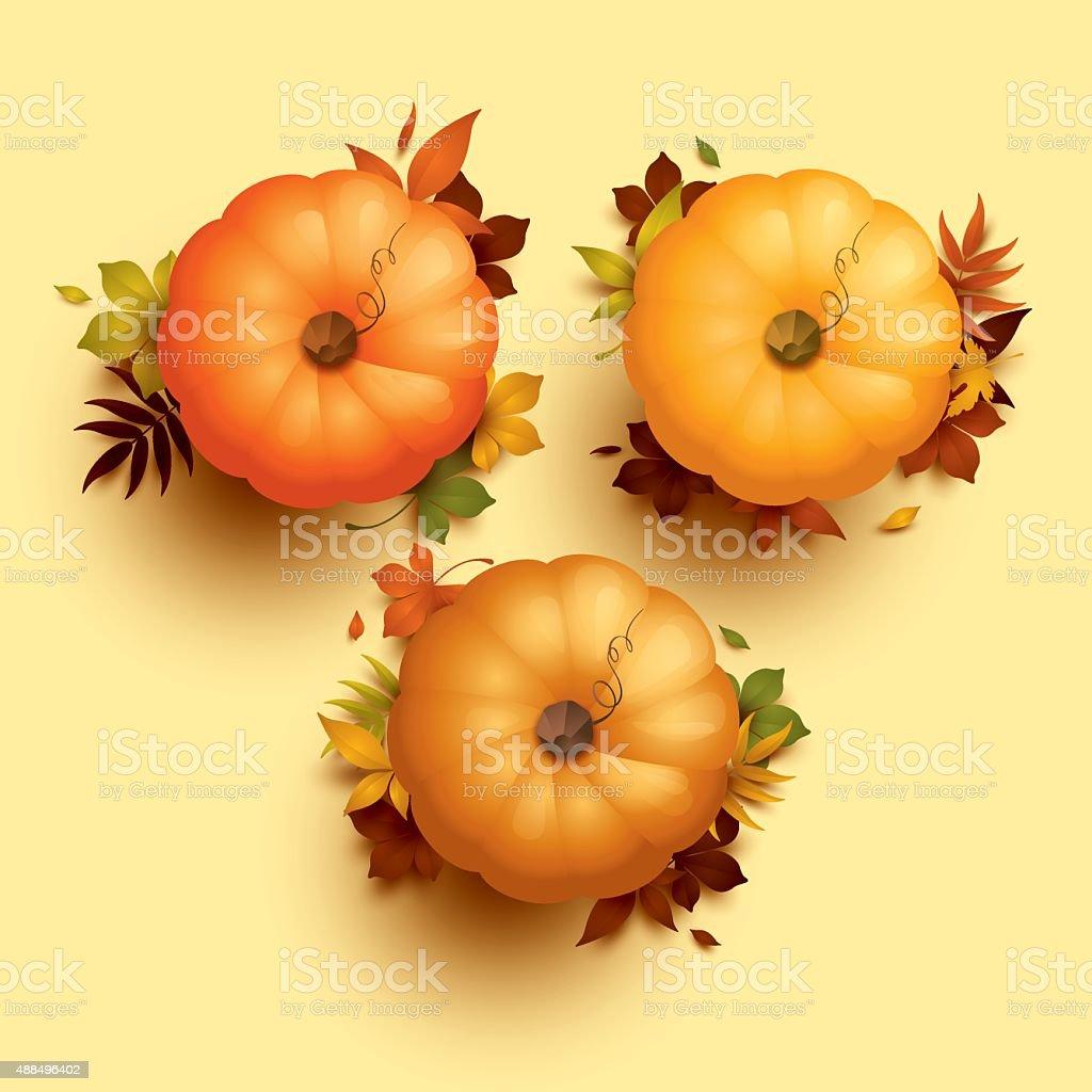 Thanksgiving pumpkins vector art illustration