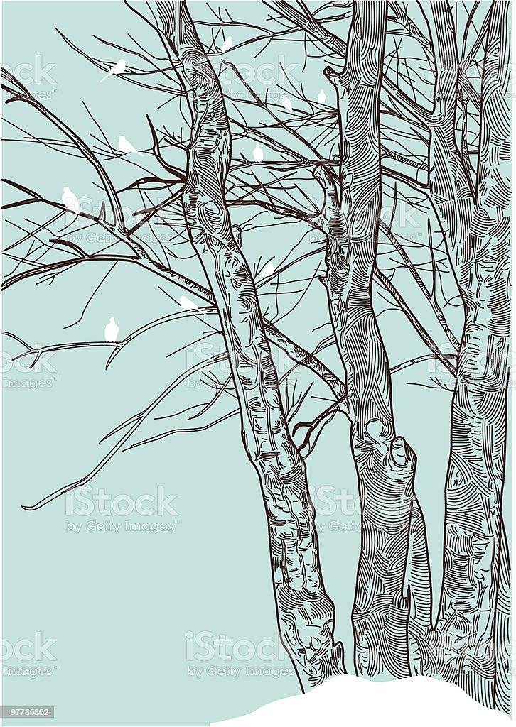 The Bareness of Winter vector art illustration
